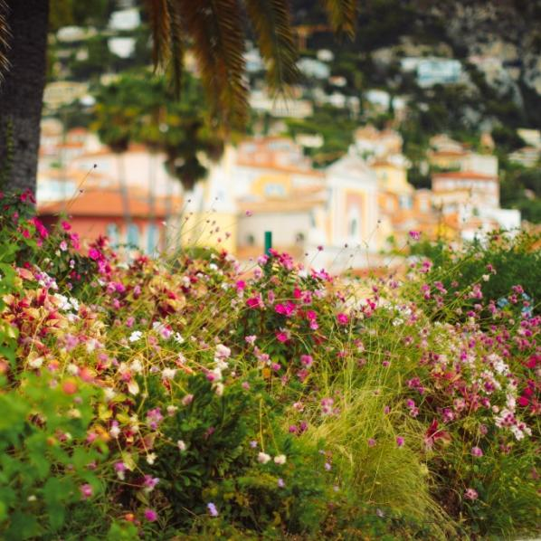 Massif de fleurs dans une commune