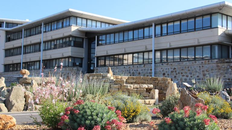 Carrière des plantes implantée devant l'hôtel du Département de l'Aude